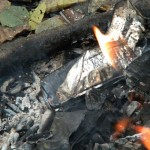 горение липо в костре